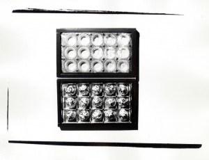 Andy Warhol Polaroids and Silver Gelatin Prints