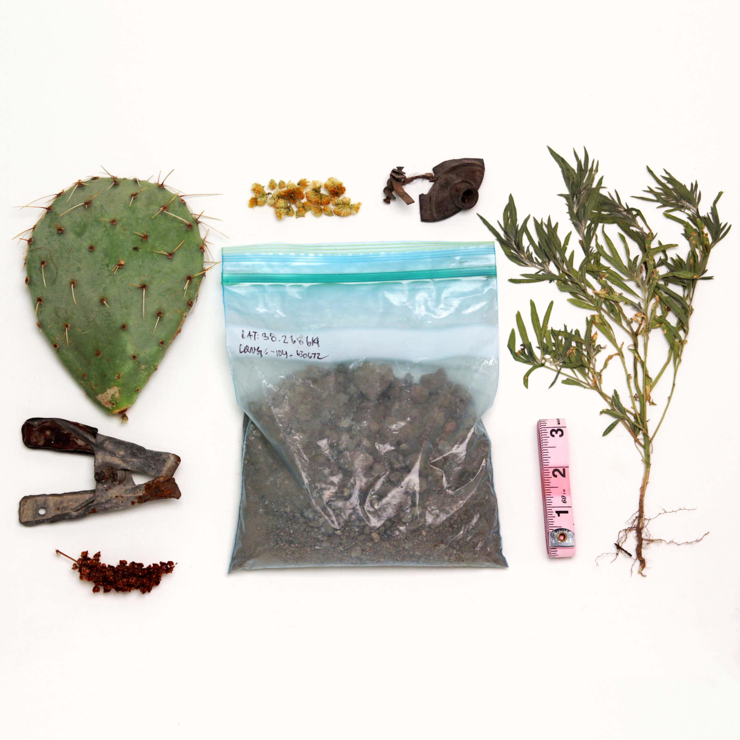 Desert ArtLAB Ecologies of Resistance