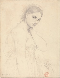 Leonardo to Matisse Master Drawings from the Robert Lehman Collection