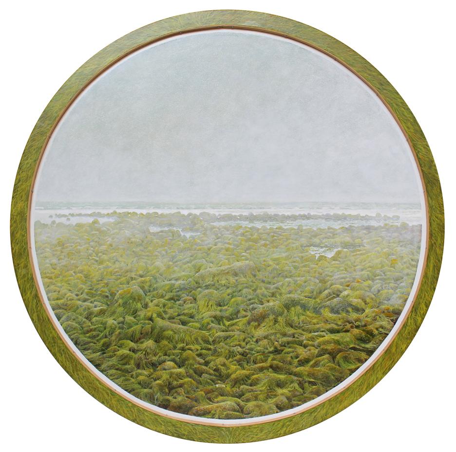 Seaweed_w